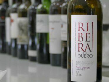 Špansko vino ribera